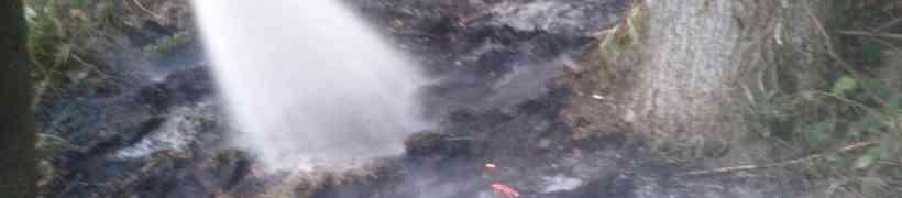 Brand eines Komposthaufen in Gigerreith